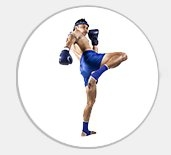 muay thai websites